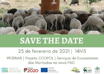 Projeto ECOPOL | 25 fev 2021